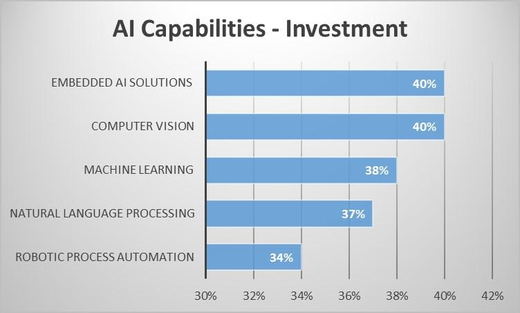 AI Capabilities - Investment .jpg